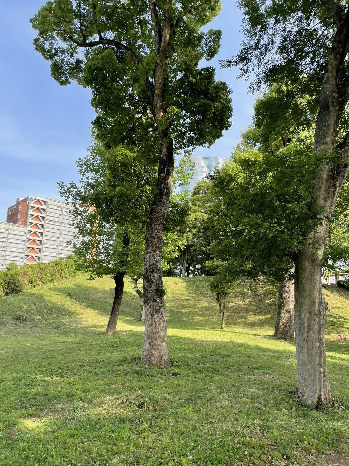瓢喜,西麻布,六本木,青山公園,散歩