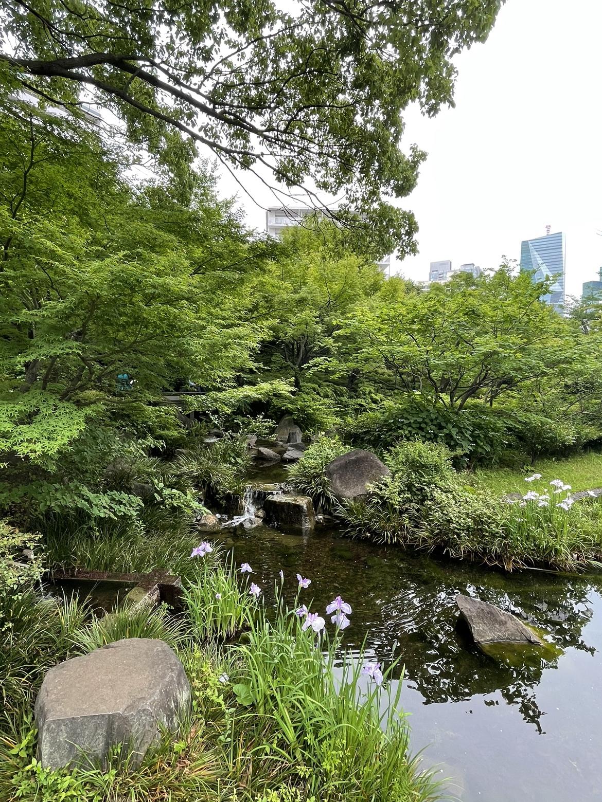 瓢喜,西麻布,六本木,六本木ヒルズ,毛利庭園,散歩
